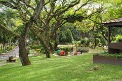 Ungdomen parkerar nära botaniska trädgården i Georgetown, Penang Arkivbild