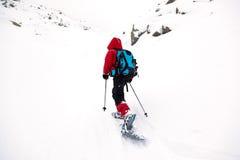 Unge i berg med snöskon Arkivfoto