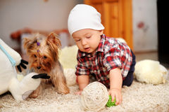 Unge och hund Royaltyfria Bilder