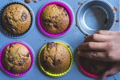 Unge som griper en muffin Arkivfoto