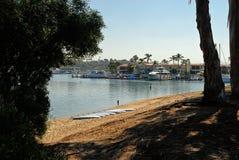 Ungeanseende på en strand på Balboahalvön arkivbild