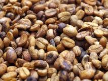 Ungebratene Kaffeebohnen Lizenzfreie Stockbilder