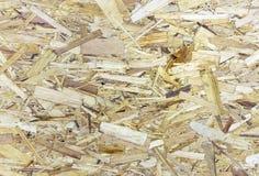 ungefärlig textur för kryssfaner Träflismaterialbakgrund Platta av ett komprimerat sågspån royaltyfri bild