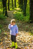 Ungeh?st Gullig pojke med Autumn Leaves p? nedg?ngnaturbakgrund svart isolerad begreppsfrihet fotografering för bildbyråer