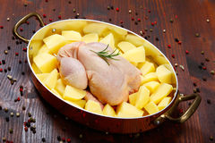 Ungekocht - Huhn mit Gemüse Lizenzfreies Stockbild