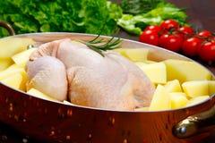 Ungekocht - Huhn mit Gemüse Stockbild