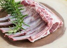 Ungekochte Lammrippen Rohes Fleisch Stockfotos