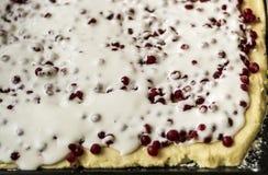 Ungekochte rote Johannisbeertorte füllte mit Zucker und Eiern in einer Metalltortenwanne Rote Früchte und Beeren Abschluss oben Stockfotos