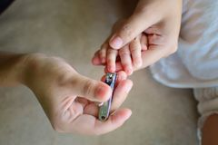 Ungen spikar klipp arkivfoton