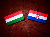 Ungersk flagga med den kroatiska flaggan på en isolerad trädstubbe Royaltyfri Bild