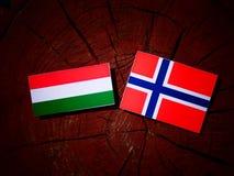 Ungersk flagga med den norska flaggan på en isolerad trädstubbe Arkivbilder