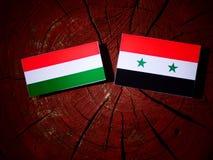 Ungersk flagga med den syrianska flaggan på en trädstubbe Royaltyfria Bilder