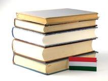 Ungersk flagga med högen av böcker på vit bakgrund Arkivbild