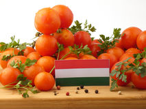 Ungersk flagga på en träpanel med tomater som isoleras på en whi Fotografering för Bildbyråer