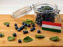Ungersk flagga på en träplanka med blåbär på wh Arkivbild