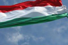 Ungersk nationsflagga i vinden Royaltyfri Fotografi