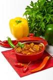 ungersk pannkakapotatis för goulash arkivfoto