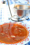 ungersk plattasoup för fisk Royaltyfri Bild