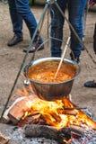 Ungersk stew Fotografering för Bildbyråer