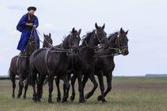 Ungerska cowboyer Royaltyfria Bilder