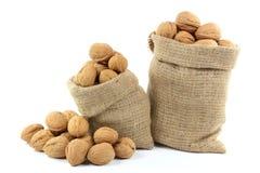 Ungeschälte Walnüsse Nuts. Stockbilder