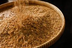 Ungeschälter Reis im Korb - schlechter Reis Stockbilder