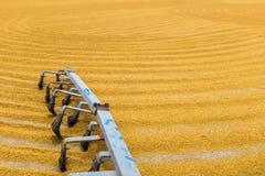 Ungeschälter Reis mit Traktor Lizenzfreie Stockfotos
