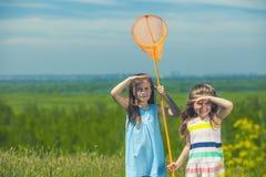 Ungesommar i ängen med apelsinen förtjänar Arkivfoto