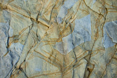Ungewöhnliches Muster auf einem Stein Stockbilder