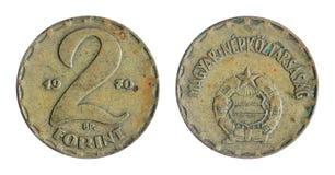 Ungherese anziano, moneta della forint Fotografia Stock Libera da Diritti