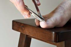 Unghie del piede del ritaglio Fotografie Stock