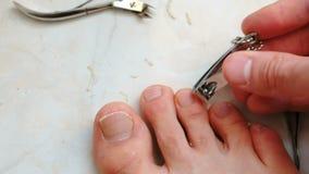 Unghie del piede di taglio dell'uomo con il tagliatore Unghie del piede del taglio del maschio a piedi Primo piano delle dita del stock footage