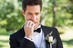 Unghie mordaci dello sposo in giardino Fotografie Stock