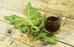 Ungiftiger schwarzer Kaffee und Kaffeebohne auf Elefantenohr treiben Blätter Lizenzfreie Stockfotografie