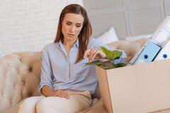 Unglückliche überflüssige Frau, die eine Grünpflanze in einem Kasten berührt Stockbilder