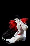 Unglückliches Pierrot Lizenzfreies Stockfoto