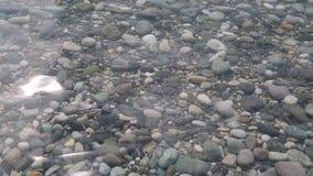 Unglaublich sauberes und transparentes Meerwasser im Sommer stock footage