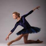 Unglaublich schöne Ballerina mit perfektem Körper in der blauen Ausstattung, die im Studio aufwirft Klassisches Ballett Stockbild