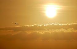 Unglaublich schöner Sonnenuntergang auf dem azurblauen Ozean Stockfotografie