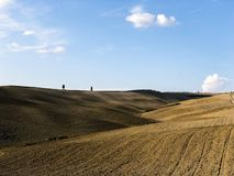 Unglaubliche Toskana-Hügel, in Italien stockfoto