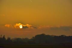 Unglaublicher Sonnenuntergang und Menge von Krähen Lizenzfreie Stockfotos