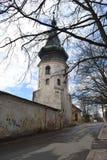 Unglaubliches Schloss von Viborg im Frühjahr Lizenzfreies Stockbild