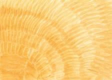 Ungleiches gelb gemalt, ockerhaltig, zitronengelb, Goldhintergrund vektor abbildung