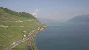 ungraded Aerial footage of Vineyard fields in Terrasses de Lavaux near Lausanne in Switzerland - UHD stock video