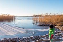 Ungt barn i vinterkläder som ser ett härligt kallt soligt sceniskt stillsamt vinterlandskap av is, vatten och vassen mot a fotografering för bildbyråer