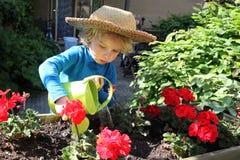 Ungt barn som bevattnar blommorna i trädgården royaltyfri foto