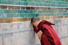 Ungt be för monk arkivfoton