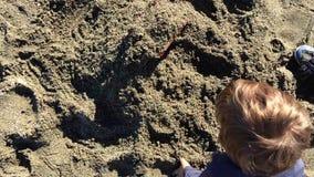 Ungt litet barn som spelar med sand stock video