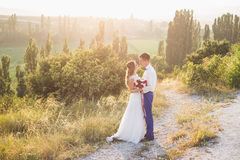 Ungt lyckligt precis gift par som poserar på överkanten av berget Royaltyfri Bild