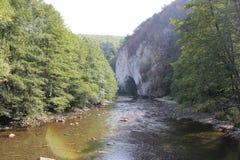 Ungurul Mare Cave Stock Images